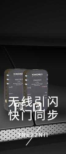 PC端品类15
