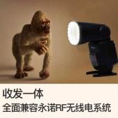 永诺 YN650EX-RF 高速TTL闪光灯
